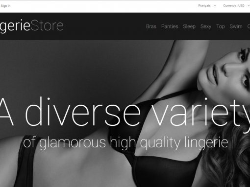 Template Prestashop e-commerce